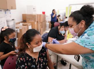 Vacunas e infertilidad, los investigadores lanzan la alarma