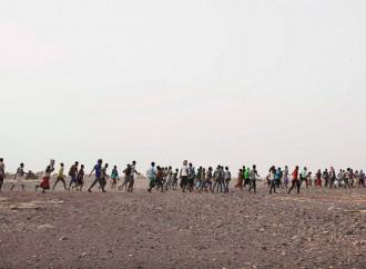 «Yo contrabandista, como Moisés». Historias de traficantes de personas