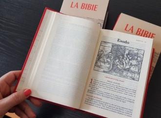 Ambigüedades del Vaticano: divorcio y homosexualidad