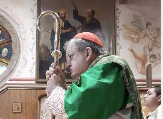 """""""Palabras del Papa fuera del Magisterio, que los obispos aclaren"""""""