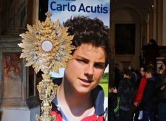 El corto camino de Carlo Acutis a la santidad
