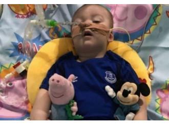 Alfie, la ricerca di un ospedale: parte la campagna
