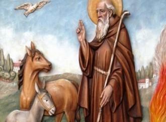San Antonio Abad, patrón de los ganaderos