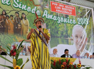 Sinodo Amazzonia, ecologismo estremo e attacco al celibato