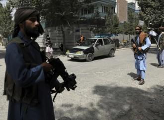 Afganistán volverá a ser la base del terrorismo
